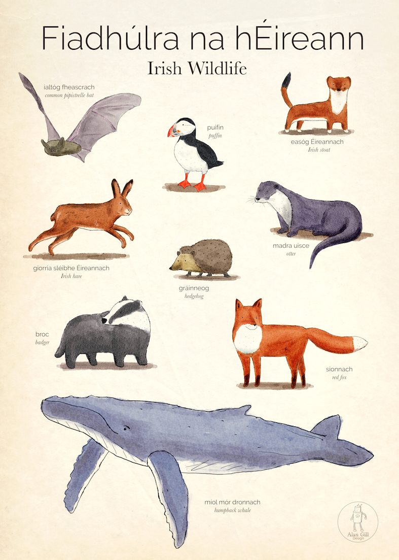 Irish Wildlife poster